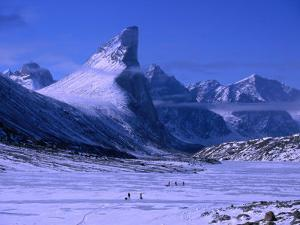 Treeking on Frozen Weasel River with Mt. Thor at Left, Auyuittuq NP, Baffin Island, Nunavut, Canada by Grant Dixon