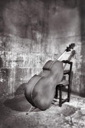 Bass Leaning on Chair. by Grant Faint