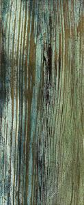 Boardwalk VII by Grant Louwagie