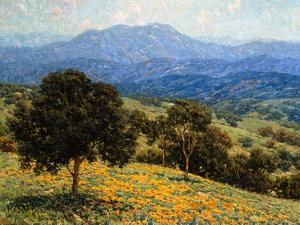 Poppies and Lupines by Granville Redmond