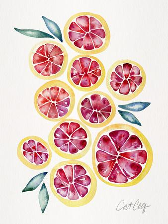 https://imgc.artprintimages.com/img/print/grape-fruit-slices_u-l-f94e9i0.jpg?p=0