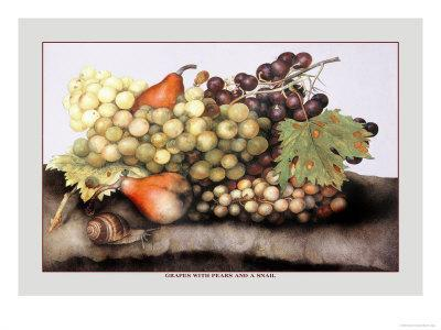 https://imgc.artprintimages.com/img/print/grapes-and-pears-with-a-snail_u-l-p291nb0.jpg?p=0