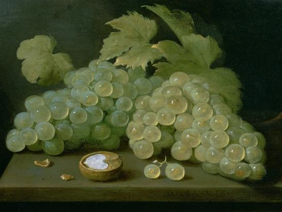 Grapes with Half a Walnut-Jacob Foppens Van Es-Giclee Print