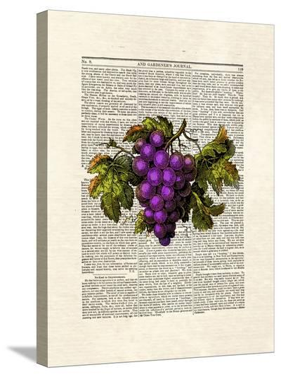 Grapes-Matt Dinniman-Stretched Canvas Print