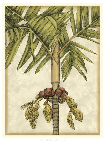 Graphic Palms II-Jennifer Goldberger-Art Print