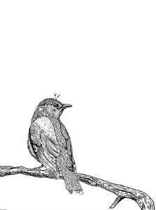 Bird III by GraphINC