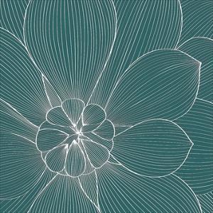 Myrrhis odorata II by GraphINC