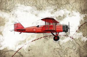 Beautiful Biplanes artwork for sale, Posters and Prints