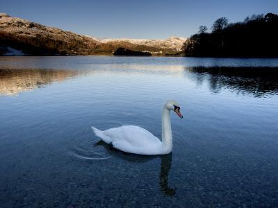 Grasmere, Near Ambleside, Lake District National Park, Cumbria, England, UK-Lee Frost-Photographic Print