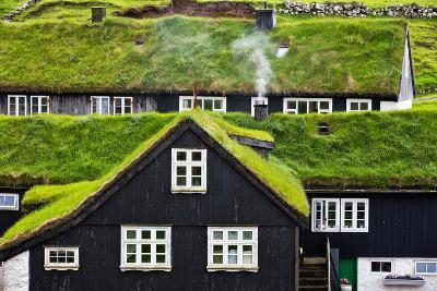 Grass Covered Rooftops on Traditional Faroese Houses-Karine Aigner-Photographic Print