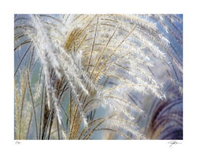 Grass Diptych Left-Ken Bremer-Giclee Print