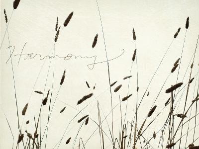 Grass Harmony-Amy Melious-Premium Giclee Print