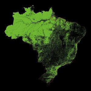 Forest Cover Of Brazil by Grasshopper Geography
