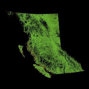 Forest Cover Of British Columbia by Grasshopper Geography