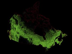 Forest Cover Of Canada by Grasshopper Geography