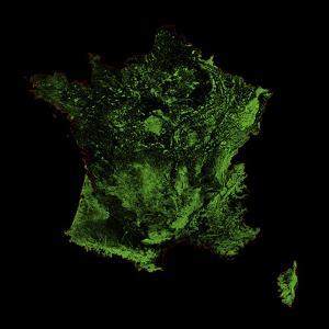 Forest Cover Of France by Grasshopper Geography