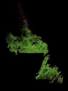 Forest Cover Of Newfoundland And Labrador by Grasshopper Geography
