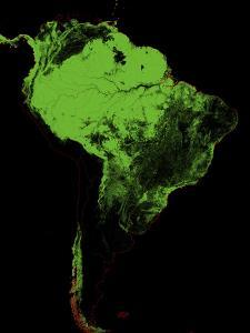 Forest Cover Of South America by Grasshopper Geography