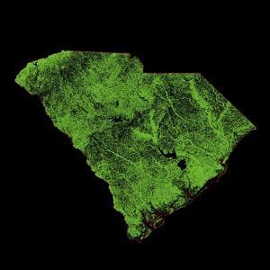 Forest Cover Of South Carolina by Grasshopper Geography