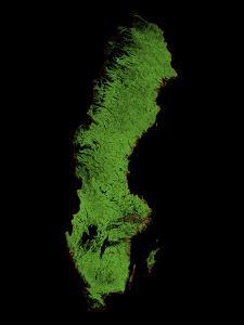Forest Cover Of Sweden by Grasshopper Geography