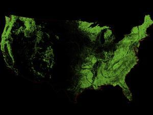Forest Cover of the US by Grasshopper Geography