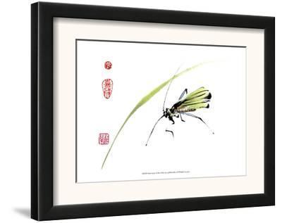 Grasshopper-Nan Rae-Framed Art Print