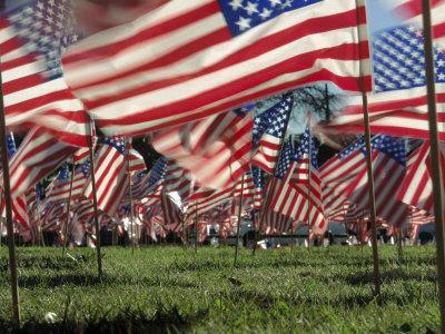 https://imgc.artprintimages.com/img/print/grassy-field-with-american-flags-stuck-in-ground_u-l-p3dmpz0.jpg?p=0
