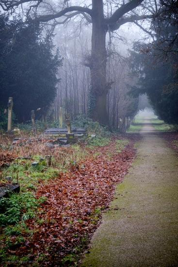 Graveyard in England in Winter-David Baker-Photographic Print