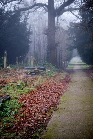 https://imgc.artprintimages.com/img/print/graveyard-in-england-in-winter_u-l-q10dtjc0.jpg?p=0