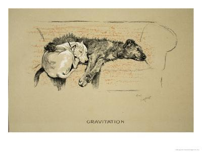 Gravitation, 1930, 1st Edition of Sleeping Partners-Cecil Aldin-Giclee Print