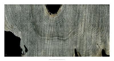 Gray Ghost II-John Butler-Giclee Print