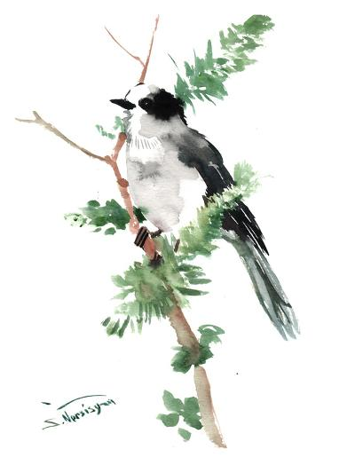 Gray Jay-Suren Nersisyan-Art Print