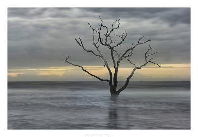 Gray Skies-Danny Head-Giclee Print