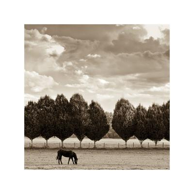 Grazing-Heather Ross-Giclee Print