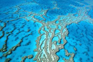 Great Barrier Reef Marine Park, Hardy Reef