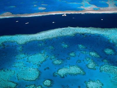 Great Barrier Reef, Whitsundy, Queensland, Australia-Steve Vidler-Photographic Print
