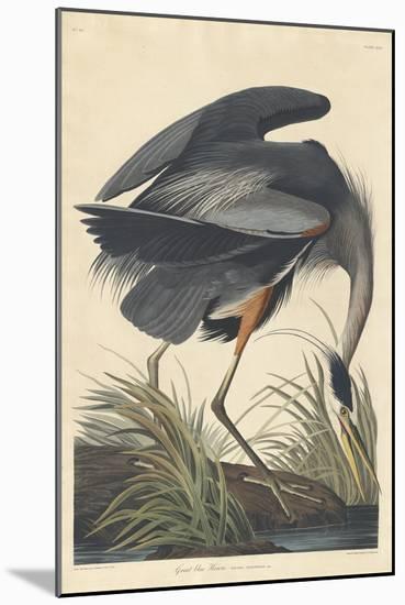 Great blue Heron, 1834-John James Audubon-Mounted Premium Giclee Print