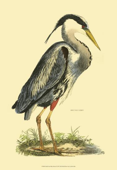 Great Blue Heron-Prideaux John Selby-Art Print