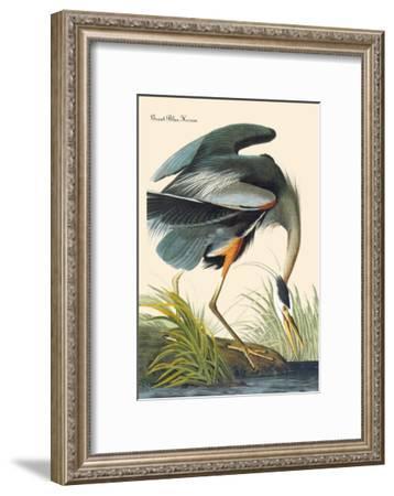 Great Blue Heron-John James Audubon-Framed Art Print