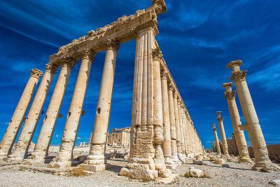 Great Colonnade at Palmyra, Syrian Desert. UNESCO World Heritage Site-siempreverde22-Photographic Print