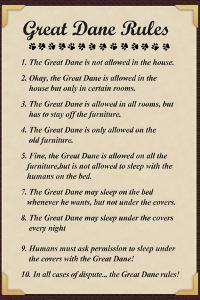 Great Dane House Rules
