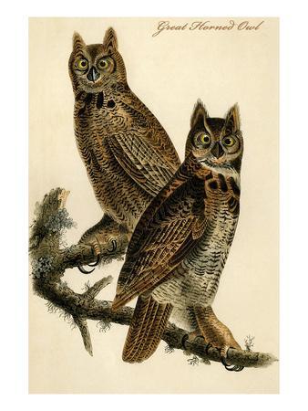 https://imgc.artprintimages.com/img/print/great-horned-owl_u-l-pgfwl60.jpg?p=0