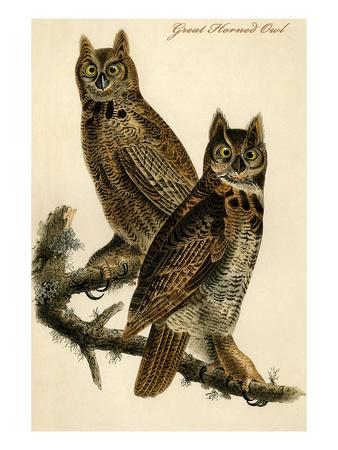 https://imgc.artprintimages.com/img/print/great-horned-owl_u-l-pgfwl70.jpg?p=0