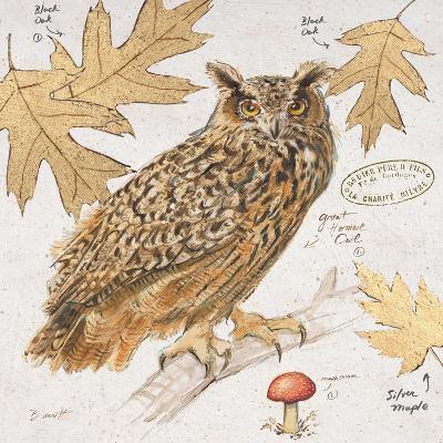 Great Horned Owl-Chad Barrett-Art Print