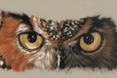 https://imgc.artprintimages.com/img/print/great-horned-owl_u-l-pykajb0.jpg?p=0