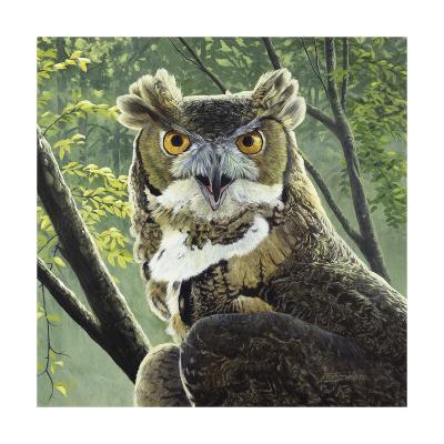 Great Horned Owl-Fred Szatkowski-Art Print