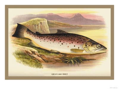Great Lake Trout-A^f^ Lydon-Art Print