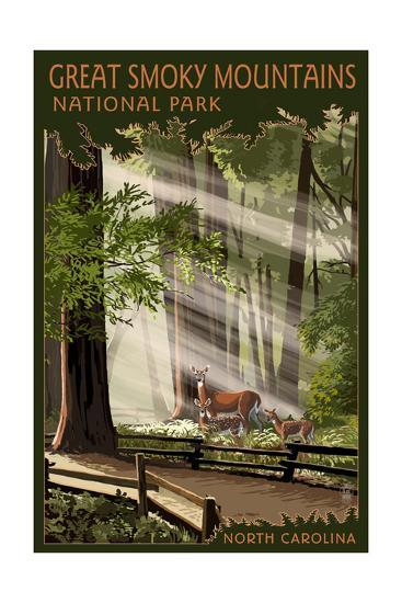 Great Smoky Mountains, North Carolina - Pathway in Trees-Lantern Press-Art Print