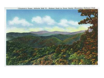 https://imgc.artprintimages.com/img/print/great-smoky-mts-nat-l-park-tn-clingman-s-dome-view-c-1940_u-l-q1gouui0.jpg?p=0