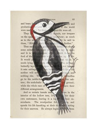 https://imgc.artprintimages.com/img/print/great-spotted-woodpecker_u-l-pshbgc0.jpg?artPerspective=n
